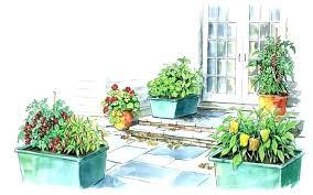 patio vegetable garden grow