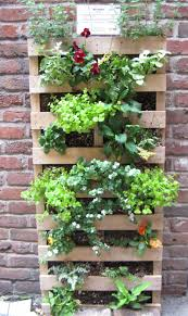 Vertical Kitchen Garden Mini Apartment Garden How To Start A Vegetable Garden