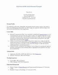 Marriage Biodata Template Unique 38 Latest Resume Format - Templates ...