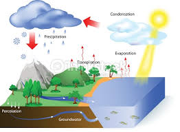 water cycle vector art   thinkstockwater cycle   vector art