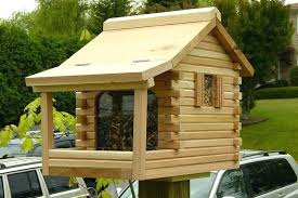 wood bird feeders plan decorative house plans feeder diy wooden free to build a birdho