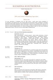 Seo And Online Marketing Specialist Resume samples