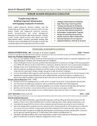 Hr Generalist Resume Objective Examples Sample Vozmitut
