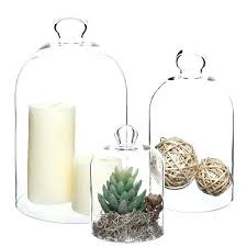 cloche bell jar tap to expand glass cloche bell jar with wooden base