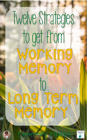 1000 images about organizational skills executive twelve strategies to get from working memory to long term memory things to