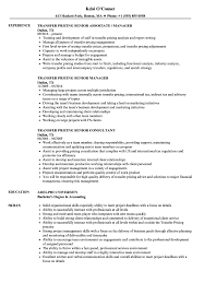 Transfer Resume Sample Transfer Pricing Senior Resume Samples Velvet Jobs 16