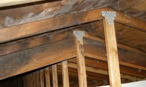 mold in attic. Plain Attic Attic Mold On Mold In