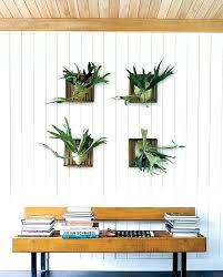 wall mounted planters indoor plant stands design with brown ornate iron materials mount ideas holders nz