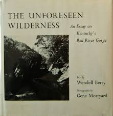 the unforeseen wilderness an essay on kentucky s red river gorge  the unforeseen wilderness