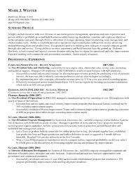 General Resume Summary Examples Examples Of Resumes