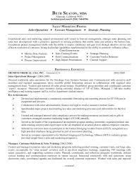 Classy Sample Resume Pre Sales Manager For Engineering Sales Manager
