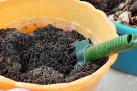 potting soil mix in a container