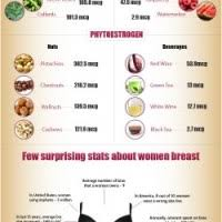 Breast Size Chart Fruit Pregnancy Week By Week How Big