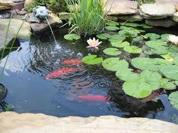 Small Picture 73 besten Garden Bilder auf Pinterest Teich Ideen Grten und