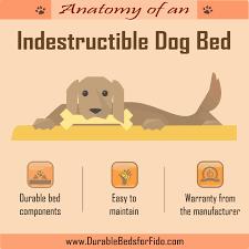 tear resistant dog bed. Unique Dog Indestructibledogbedinfographic To Tear Resistant Dog Bed E