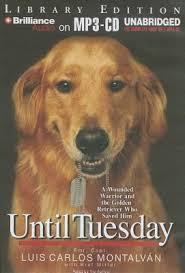 essays pets home amp garden audio   books amp information about essays  until tuesday a wounded warrior and the golden retriever who saved him