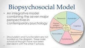 the biopsychosocial model of health and illness jane kupkowski  the biopsychosocial model of health and illness