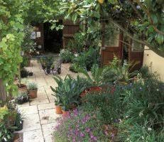 Small Picture Garden Design Garden Design with Modern and Contemporary