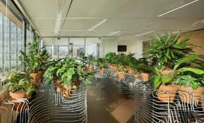 Small Picture Van Eijk Van der Lubbe Project Indoor Garden Design for the