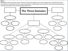 Three Domains Of Life Venn Diagram Domain And Kingdom Classification Concept Map And Graphic