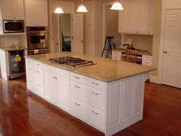 Diy Kitchen Cabinets Doors Kitchen Cabinets 65 Kitchen Cabinet Doors Diy With Kitchen