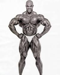 build pavement ing muscle m with the eight time mr olympia ronnie coleman workout routine