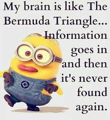top 40 funniest minions es sayings