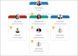 Company Org Chart Why A Startup Org Chart Is An Invaluable Tool For Growth