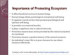 sample essay protection of natural ecosystems is a psychological an  sample essay protection of natural ecosystems is a psychological and spiritual necessity