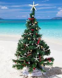 A unique spin on holiday decor. Beach Christmas TreesFamily ...