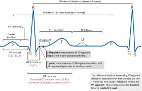 Ecg Chart Examples Ecg Interpretation Characteristics Of The Normal Ecg P