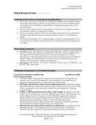 Summary Resume Example Professional Summary Resume Examples Resume Sample