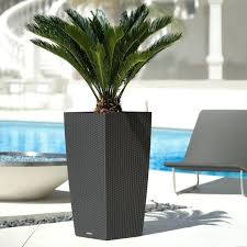 large outdoor pots large outdoor pots best large outdoor pots the best of planters you can look ceramic deck large black outdoor pots nz