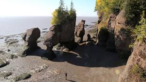 The Phenomenal Bay Of Fundy Your Discovery Bbc Storyworks