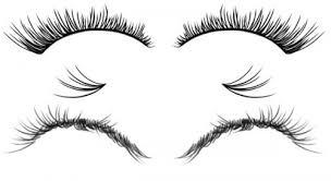 eyelash brush. free eyelashes brushes set eyelash brush