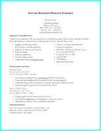 Veterinary Resume Classy Tech Savvy Resume Best Resume Template Whizzme