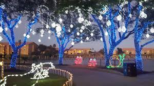 moody gardens festival of lights lights picking a tree