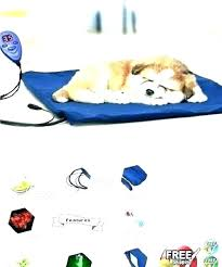 solar heating pads for pets animal pad outdoor heat lamp cats best mat electric dog dogs