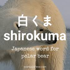 35 Awesome Japanese Winter Words You Need To Know Team Japanese