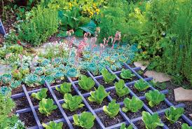 Image result for organic gardening