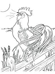 Printable Easter Chick Coloring Pages Chicken Pictures Page Free