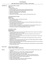 Master Planner Resume Samples Velvet Jobs