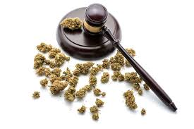 to enlarge court not all weed ta are legal bruce weber shutterstock