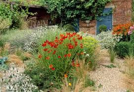 Gravel Garden Design Amazing Plant Combination Ideas Plant Family Lavandula Lavenders