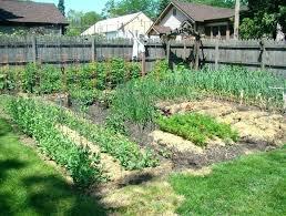 florida fall vegetable garden fall gardening in vegetable gardening idea fall garden south summer in large