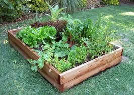 how to build a vegetable garden. Photo: At Home How To Build A Vegetable Garden E