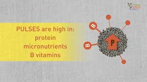 what are pulses and why are they important crops for food security what are pulses and why are they important crops for food security