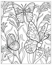 Coloring Pages Of Butterflies And Flowers Running Downcom