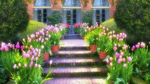 Small Picture Flowers Filled Flowers Colorful Flower Beautiful Garden Nature