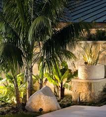 palm tree lights outdoor lighting by perspectives patio